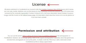Foodiesfeed-Free-Stockphoto-License