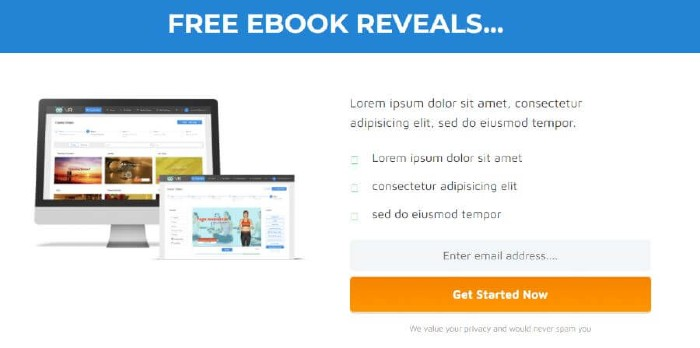 landing-page-example-3