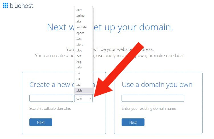 domain-extension-search-bluehost